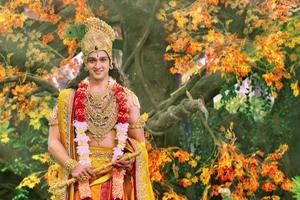 Krishna, Credit: www.startv.in
