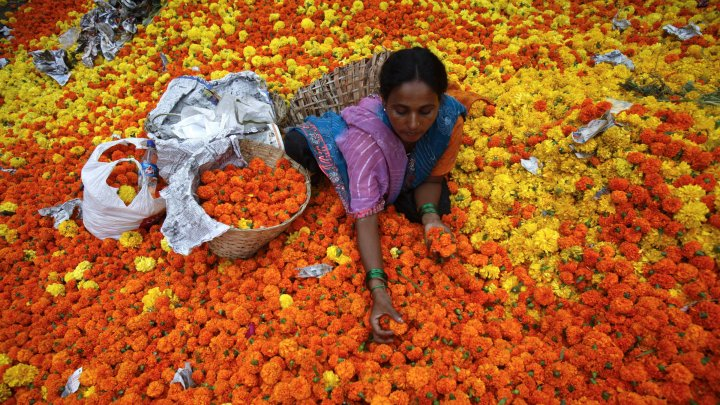 Vida Manejo, India, International Women Day