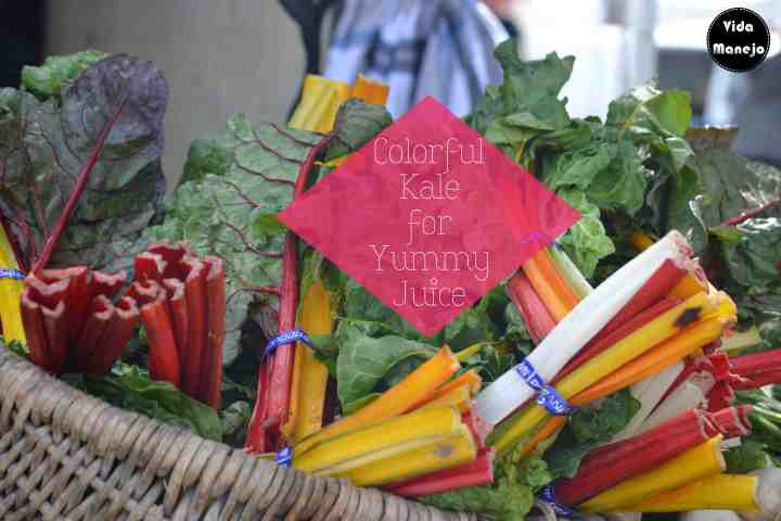 San Francisco Farmer Market - Vida Manejo9